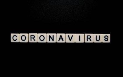 Coronavirus / COVID 19